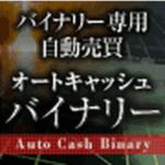 ACBオートキャッシュバイナリー【検証とレビュー】