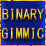 バイナリーギミック(BINARY GIMMIC)検証とレビュー