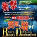 バイナリードミネーション【検証とレビュー】