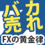 FXの黄金律DVD 【検証とレビュー】