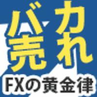 FXの黄金律DVD