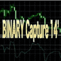BINARY Capture 14