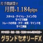 グランドセオリーFX【検証とレビュー】