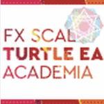 FXスキャル・タートルEA・アカデミア【検証とレビュー】