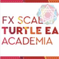 FXスキャル・タートルEA・アカデミア