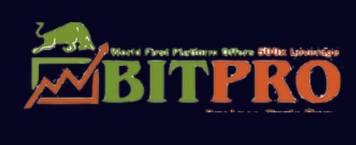 BITPRO500のロゴ