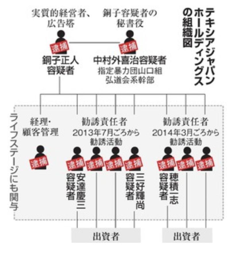 テキシアジャパンホールディングスの組織図