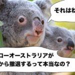 ハイローオーストラリア日本撤退&廃業!ウワサの真相に迫る!