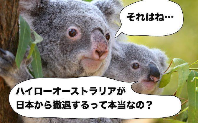 ハイローオーストラリア日本撤退のウワサの真相に迫る!