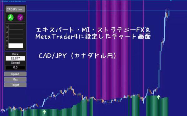 エキスパート・MI・ストラテジーFX|CAD/JPY