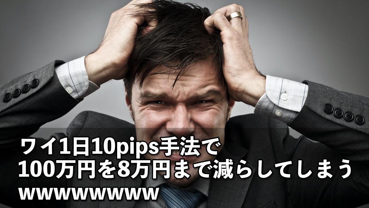 【悲報】ワイ、1日10pips手法で100万円を8万円まで減らしてしまうwwwwwwww